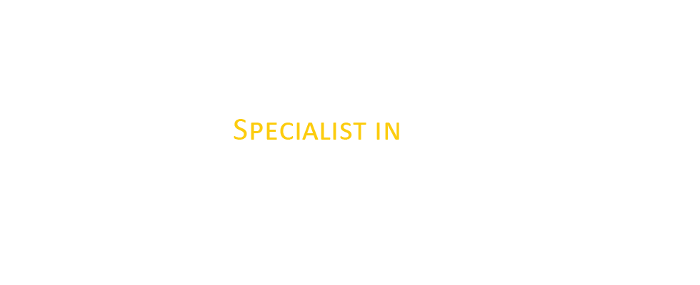 Advantage Ground and Transportation Services